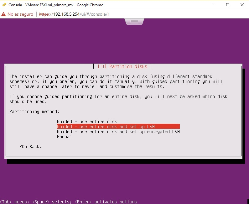 Selección disco duro para Ubuntu Server en VMWare