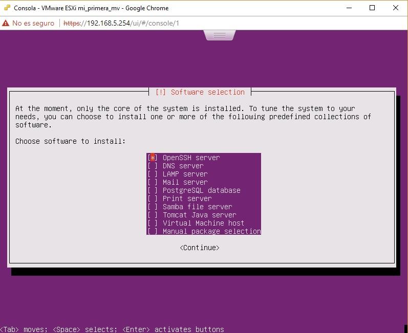 Selección paquete software SSH en Ubuntu Server en VMWare